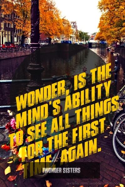 wonder quote